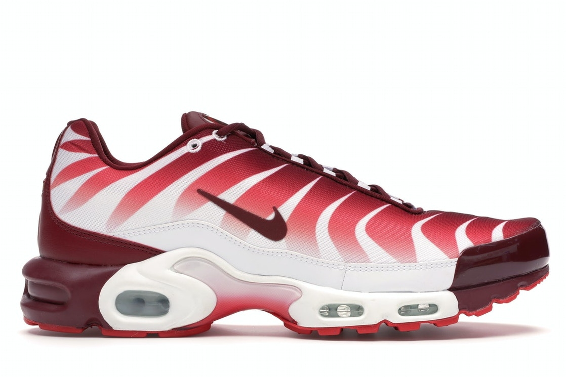 Nike Air Max Plus After The Bite Aq0237 101